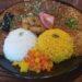 カオススパイスダイナー 福島3丁目店 パンジャビコールチキンと桜海老と秋茄子のカレー